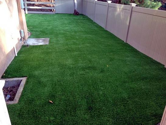 Artificial Grass Photos: Artificial Grass Bradbury, California Pet Paradise, Backyard Design
