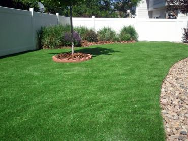Artificial Grass Carpet San Antonio Heights, California Roof Top, Backyard Designs artificial grass