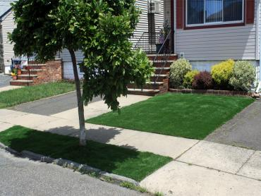Artificial Grass Photos: Artificial Grass Carpet Sunnyslope, California Landscape Ideas, Front Yard Landscaping