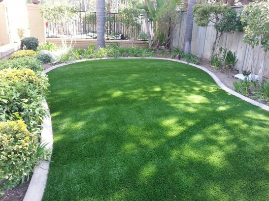 Artificial Grass Photos: Artificial Lawn Malibu Beach, California Rooftop
