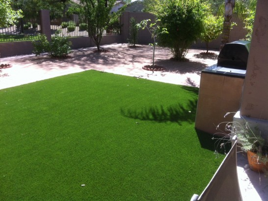 Artificial Grass Photos: Artificial Lawn Topanga, California Artificial Turf For Dogs, Backyards