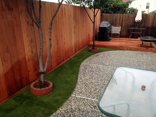 Artificial Grass Photos: Artificial Lawn West Rancho Dominguez, California Pet Turf, Backyard Garden Ideas