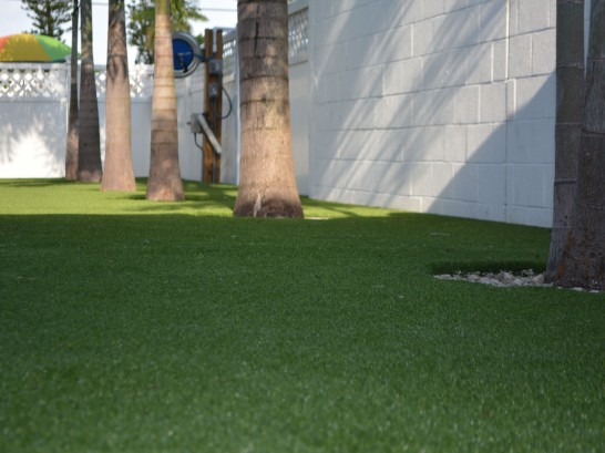 Artificial Grass Photos: Artificial Turf Agoura Hills, California City Landscape, Commercial Landscape