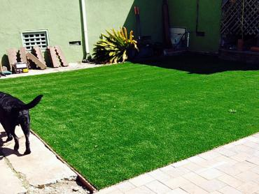 Artificial Grass Photos: Artificial Turf Cost La Habra Heights, California Dog Running, Backyards