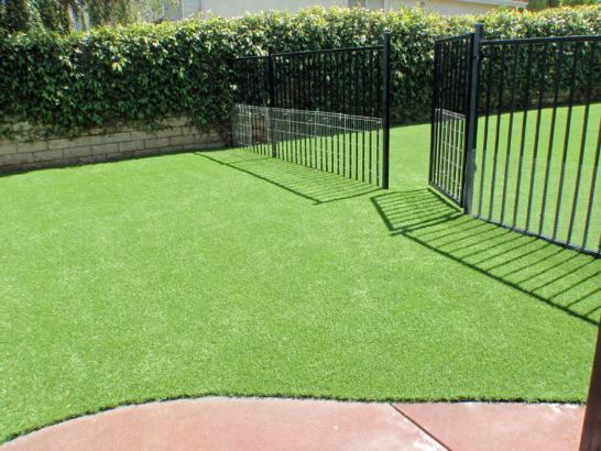Artificial Grass Photos: Artificial Turf Cost Signal Hill, California Garden Ideas, Front Yard Design
