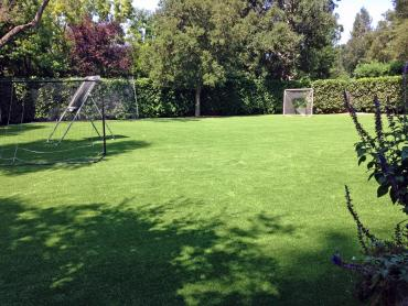 Artificial Grass Photos: Artificial Turf Cost Westmont, California Soccer Fields, Backyard Landscaping