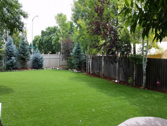 Artificial Grass Photos: Artificial Turf Installation Belvedere, California Cat Playground, Beautiful Backyards