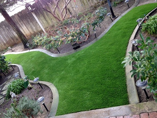 Artificial Grass Photos: Artificial Turf Installation Inglewood, California City Landscape, Backyard Ideas