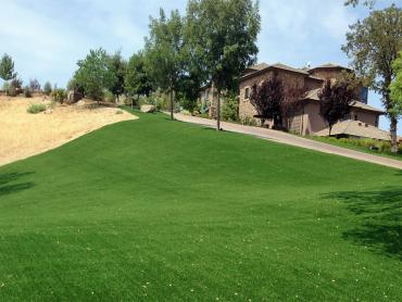 Artificial Grass Photos: Artificial Turf Installation Signal Hill, California Design Ideas, Front Yard Landscaping Ideas