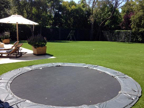 Artificial Grass Photos: Artificial Turf Installation Valencia, California Landscape Ideas, Backyard Ideas