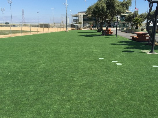 Artificial Turf Sunnyslope, California Garden Ideas, Recreational Areas artificial grass