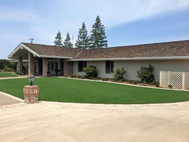 Artificial Grass Photos: Artificial Turf Vincent, California Lawn And Garden, Front Yard Landscaping