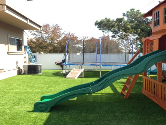 Best Artificial Grass Century City, California Lawns, Backyard Design artificial grass