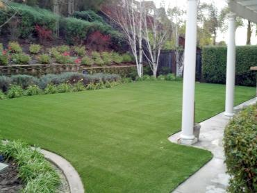 Artificial Grass Photos: Best Artificial Grass Grand Terrace, California Pet Turf, Small Backyard Ideas
