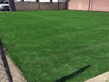 Artificial Grass Photos: Best Artificial Grass Lakeview, California High School Sports