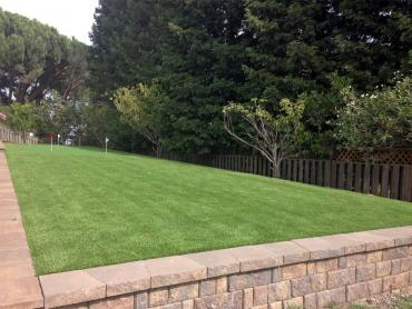 Artificial Grass Photos: Fake Grass Acton, California Home And Garden, Backyard Landscaping