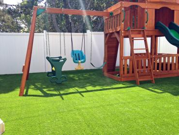 Artificial Grass Photos: Fake Grass Los Serranos, California Lacrosse Playground, Backyard Designs