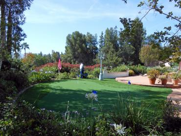 Fake Grass Mountain View Acres, California Putting Green Flags, Backyard Landscaping artificial grass