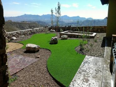 Artificial Grass Photos: Fake Grass Oak Hills, California Dog Running, Backyard Landscape Ideas