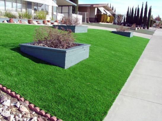 Artificial Grass Photos: Fake Grass Vernon, California Rooftop, Front Yard Landscape Ideas