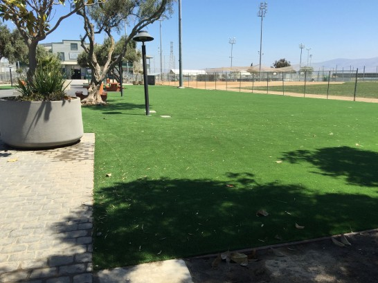 Artificial Grass Photos: Fake Lawn Crestline, California Rooftop, Parks