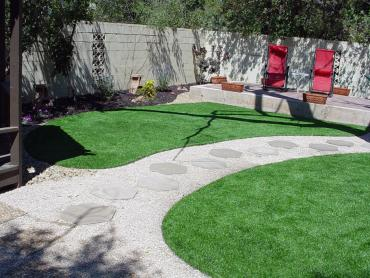 Artificial Grass Photos: Fake Lawn Ladera Heights, California Landscaping, Backyard Design