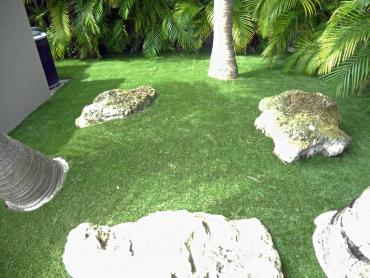 Artificial Grass Photos: Fake Lawn Perris, California Paver Patio, Backyard Design