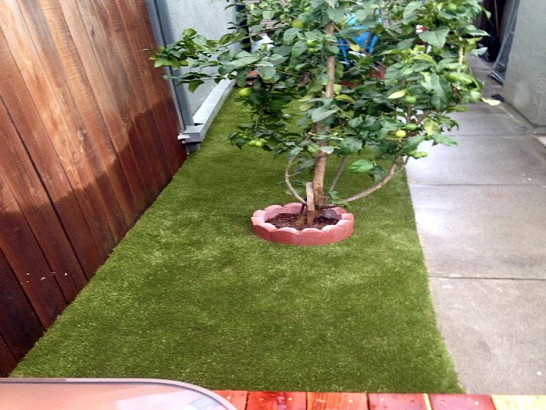 Artificial Grass Photos: Faux Grass Burbank, California Garden Ideas, Backyard Landscape Ideas