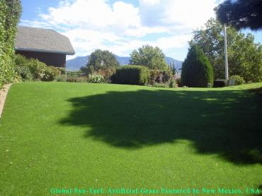 Artificial Grass Photos: Grass Carpet Grand Terrace, California Cat Playground, Backyard Landscaping Ideas