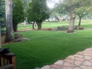 Artificial Grass Photos: Grass Turf Inglewood, California Lawn And Garden, Front Yard Landscaping Ideas