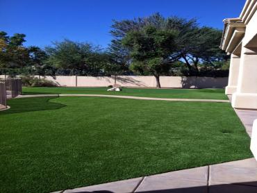 Artificial Grass Photos: Grass Turf Littlerock, California Roof Top, Front Yard Landscaping Ideas