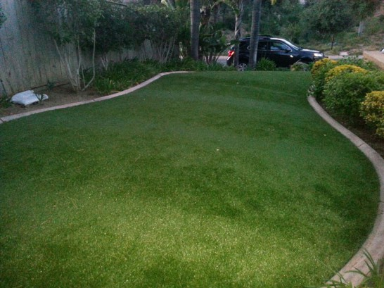 Artificial Grass Photos: Grass Turf Rialto, California Lawn And Garden, Front Yard Landscape Ideas