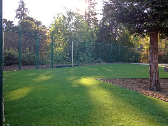 Artificial Grass Photos: How To Install Artificial Grass Claremont, California Landscape Design, Recreational Areas