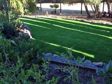 Artificial Grass Photos: How To Install Artificial Grass Pinon Hills, California Roof Top, Backyard Designs