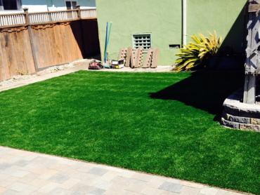 Artificial Grass Photos: Lawn Services Victorville, California Garden Ideas, Backyards