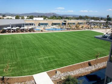 Artificial Grass Photos: Outdoor Carpet Chatsworth, California Sports Athority, Commercial Landscape