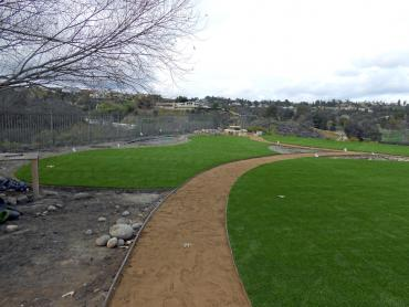 Artificial Grass Photos: Outdoor Carpet Needles, California Bocce Ball Court