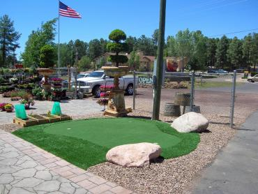 Artificial Grass Photos: Outdoor Carpet San Fernando, California Design Ideas, Commercial Landscape