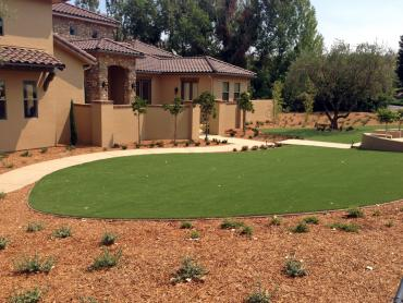 Artificial Grass Photos: Synthetic Grass Belvedere, California Design Ideas, Front Yard Ideas