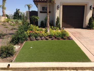 Artificial Grass Photos: Synthetic Grass Calimesa, California Design Ideas, Front Yard Ideas