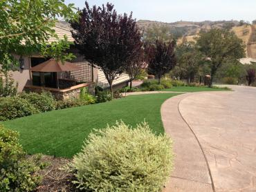 Artificial Grass Photos: Synthetic Grass Cost Barstow, California Rooftop, Front Yard Landscaping Ideas