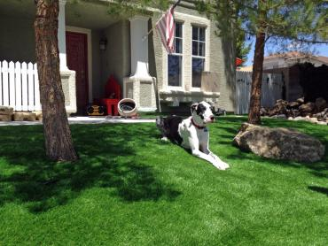 Artificial Grass Photos: Synthetic Grass Cost Oasis, California Backyard Deck Ideas, Dogs Park