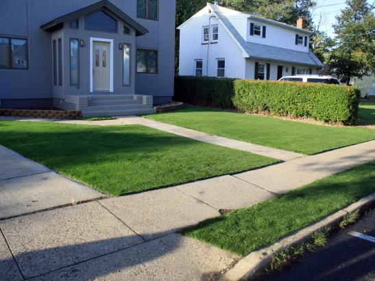 Artificial Grass Photos: Synthetic Grass Needles, California Lawns, Front Yard Landscaping