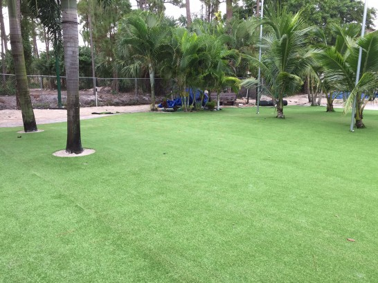 Artificial Grass Photos: Synthetic Turf Big River, California Roof Top, Commercial Landscape