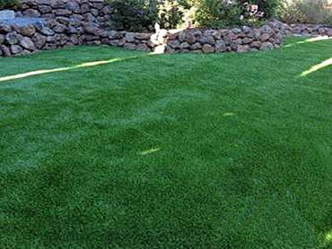 Artificial Grass Photos: Synthetic Turf Chino, California Dogs, Backyard Design