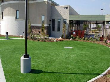 Artificial Grass Photos: Synthetic Turf South El Monte, California Backyard Playground, Commercial Landscape