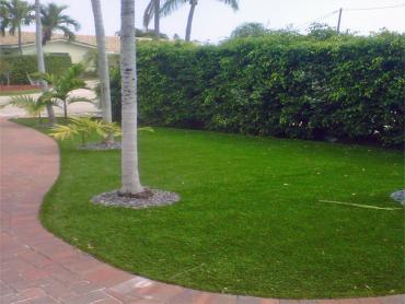 Artificial Grass Photos: Synthetic Turf Supplier Culver City, California Lawns, Front Yard Landscape Ideas