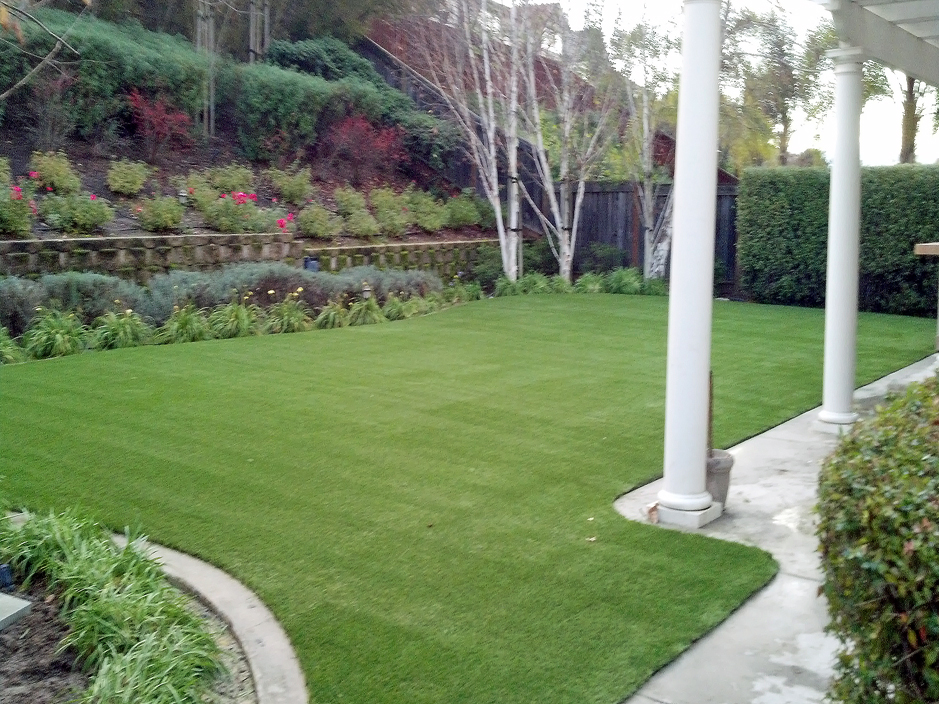 Best Artificial Grass Grand Terrace, California Pet Turf ... on Artificial Turf Backyard Ideas id=38117